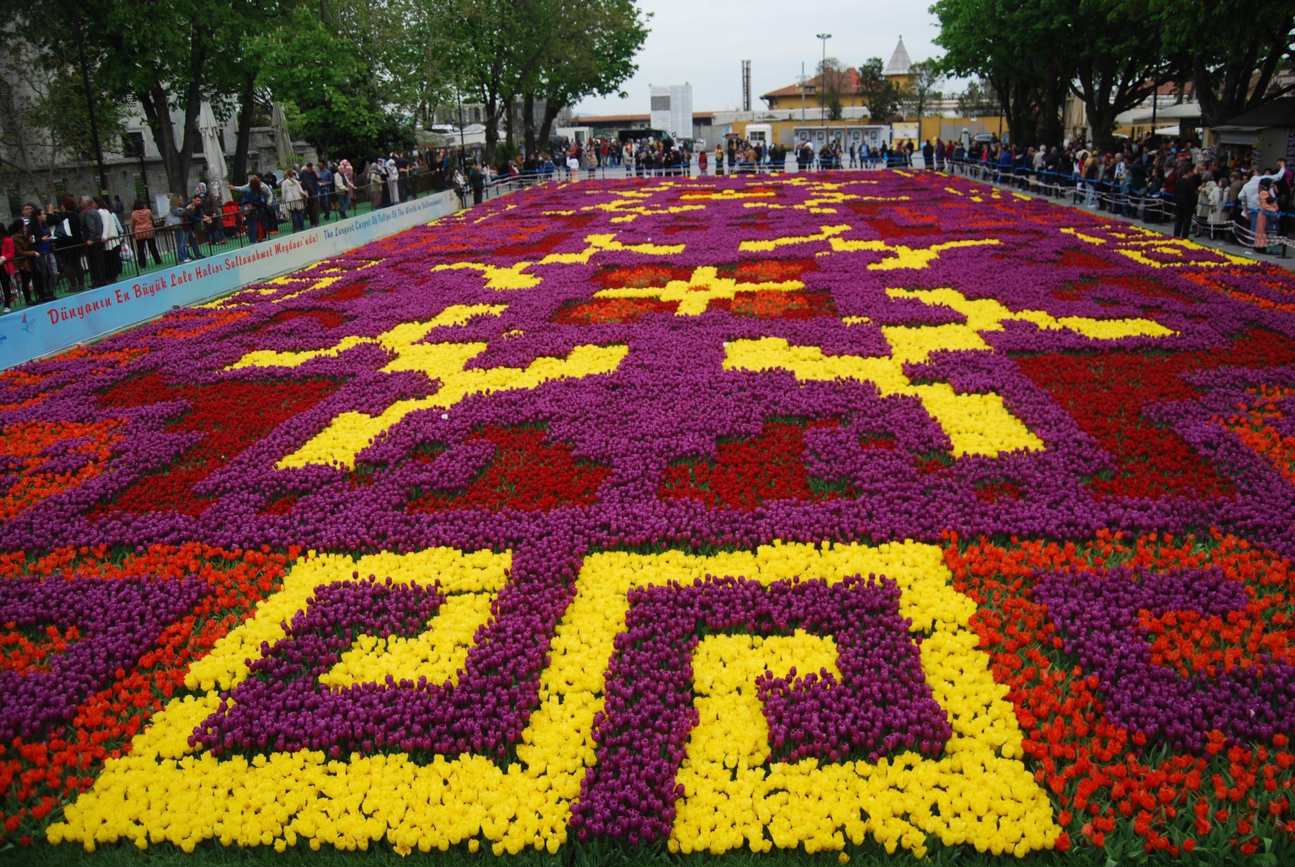 Фото цветочного фестиваля