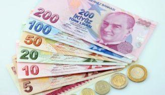 Валюта Турции: какие деньги в стране, курс, где обменять и другие советы