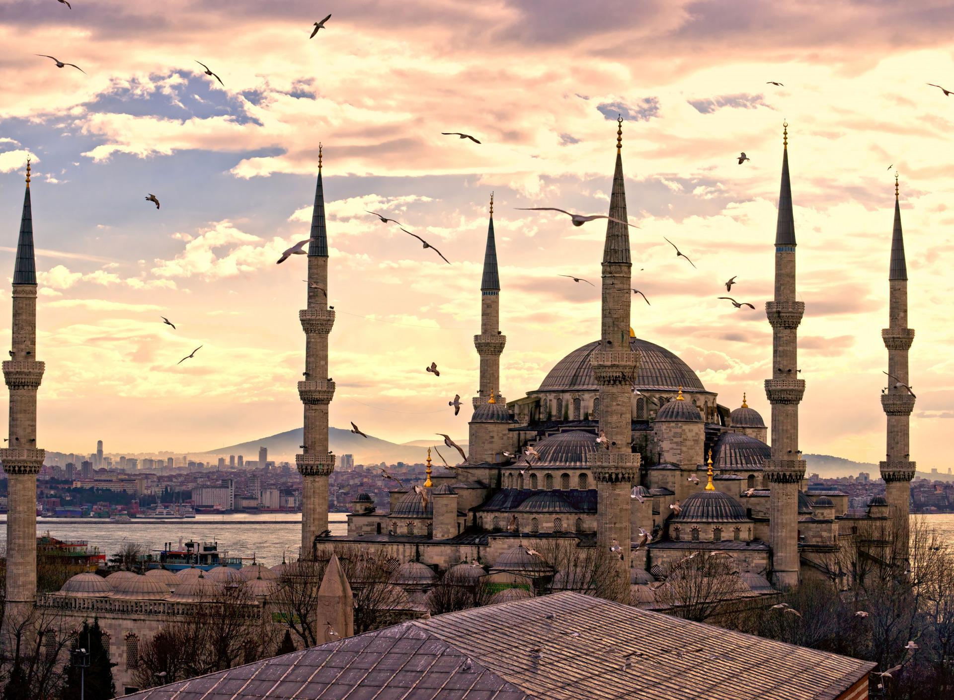 Какую валюту брать на отдых в Турцию