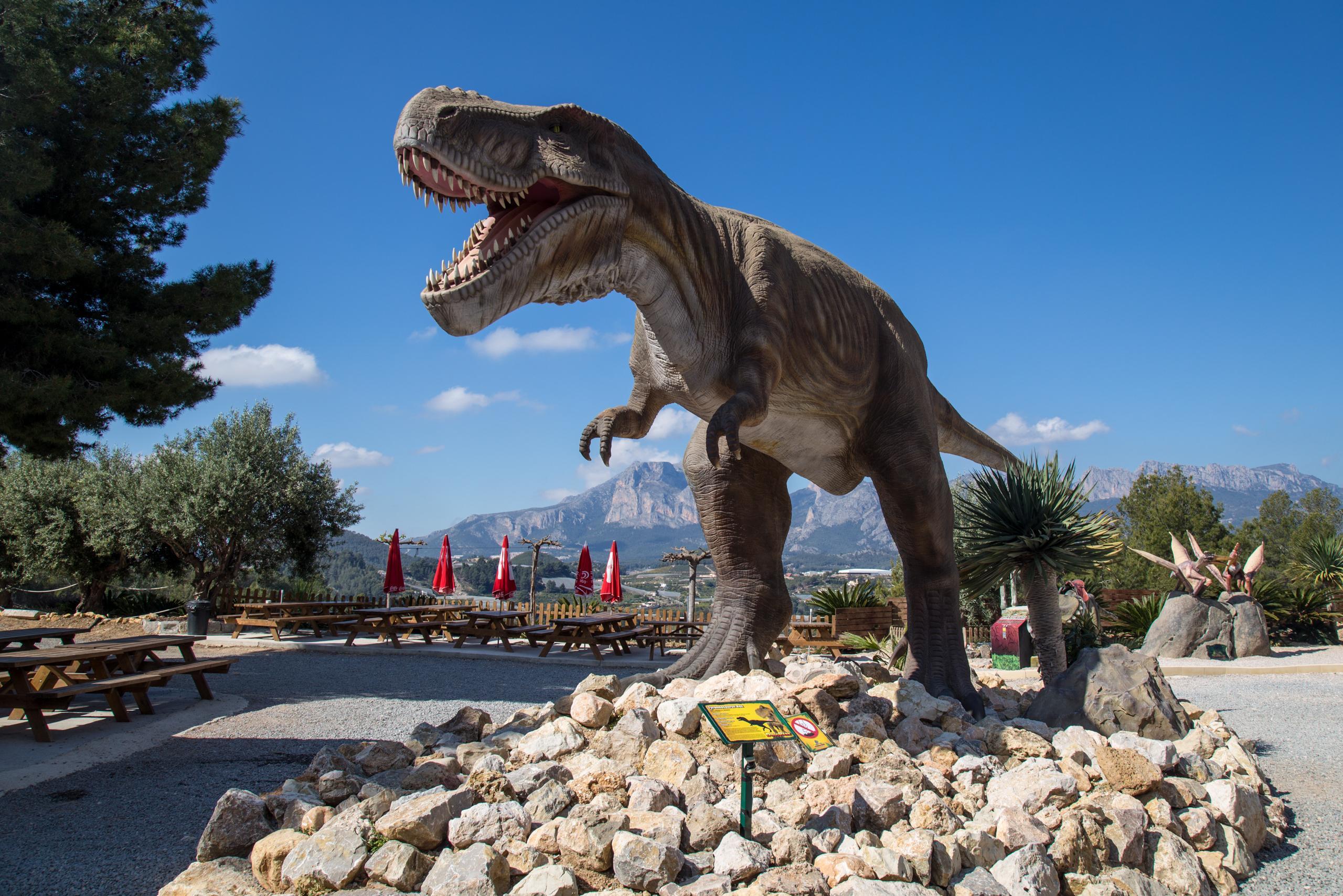 Фото динозавра в Динопарке