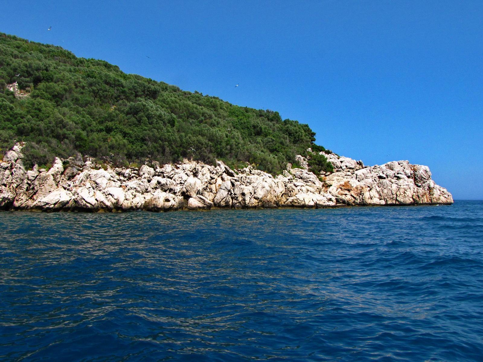 Фото Мышиного острова